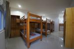 Dormitory rooms at Freedive Panglao Resort